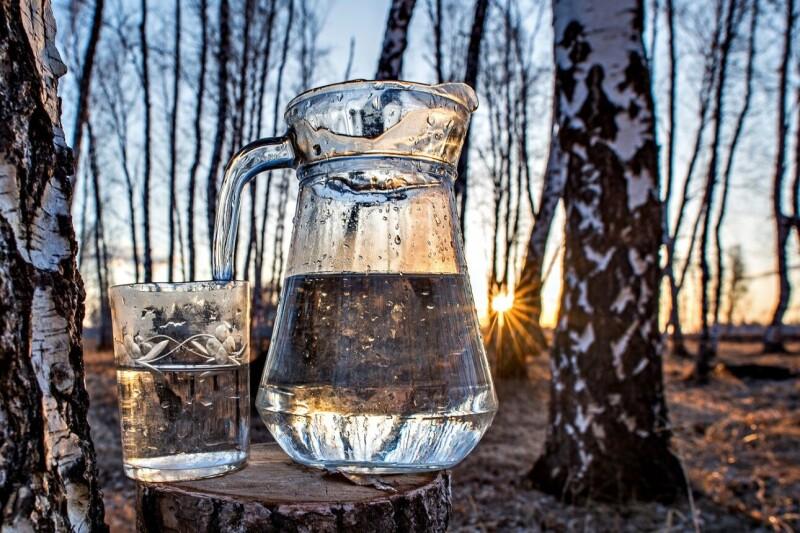 Свіжозібраний березовий сік – дуже смачний і корисний напій