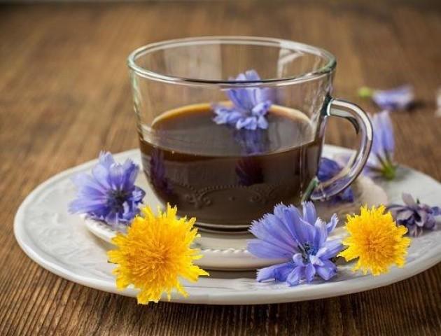 Кава «Цикуба»: у волинському санаторії презентували новий цілющий напій
