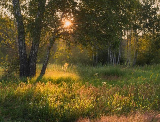 Якою буде погода у Луцьку та області 30 серпня