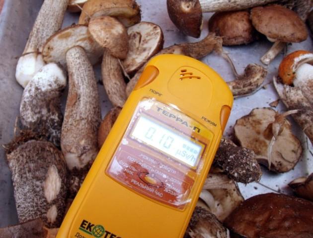 У трьох районах на Волині знайшли радіацію у їжі