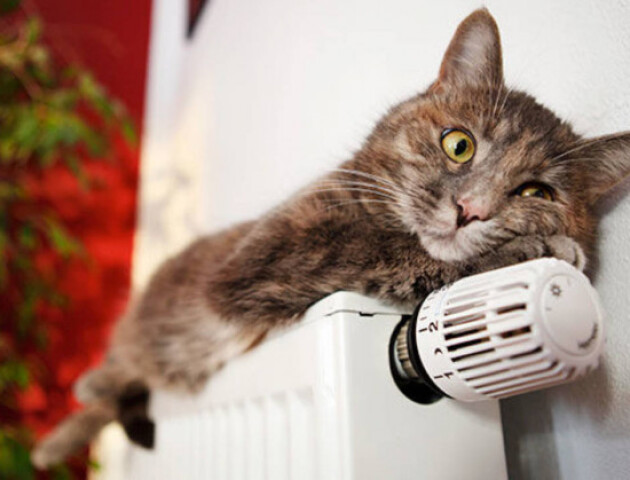 У Луцьку через аварію на тепломережі будинки залишились без тепла