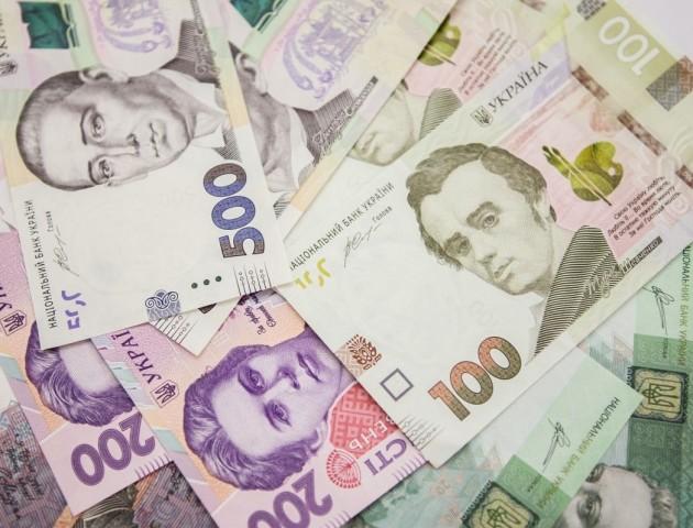 Волинські фіскали просять «бізнес» погасити борги