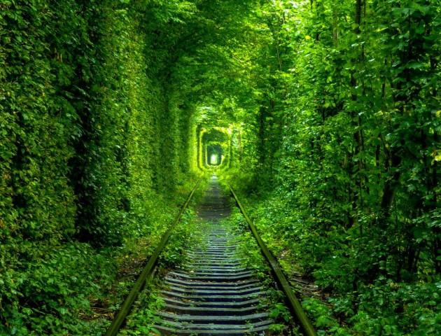 В'їзд у «Тунель кохання» буде платним