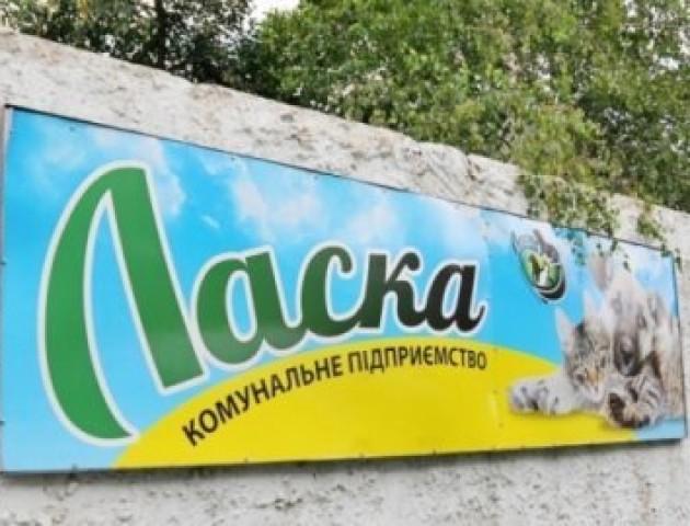 Відомо, хто виконуватиме обов'язки директора в КП «Ласка»