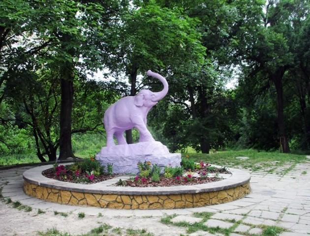 Ботсад у Луцьку потребує збереження, – Мінприроди