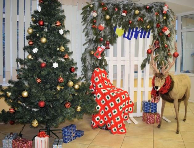У луцькому ЦНАПі – новорічна фотозона з оленем. ФОТО