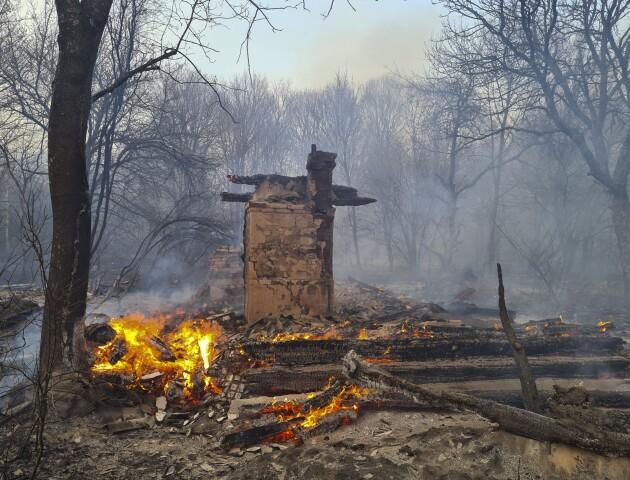 В Україні далі горять ліси