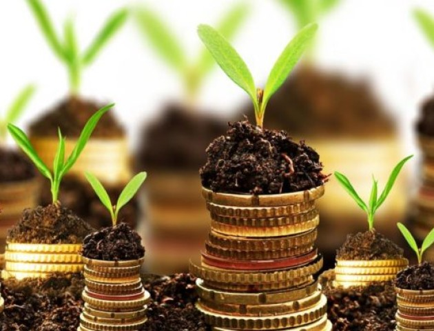 За 2018 рік до місцевих бюджетів Волинської області надійшло 50 млн грн податку на нерухоме майно