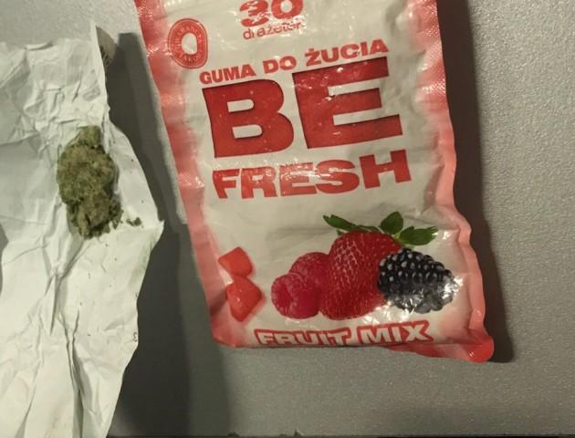 На «Ягодині» у пасажира рейсового автобуса волинські митники знайшли марихуану