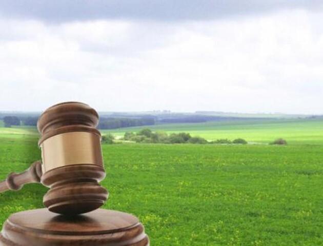 На Волині у березні відбудеться сім земельних аукціонів. На торги виставили 24 лоти