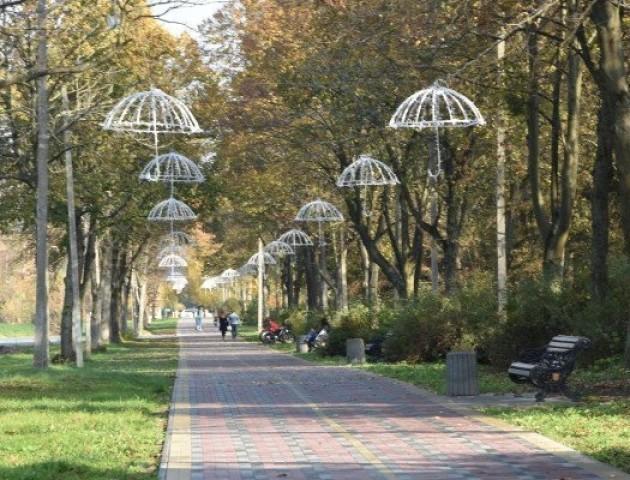У Центральному  парку Луцька чистять хащі і освітлюють ще одну доріжку. ФОТО