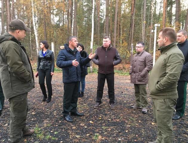 Україна спільно з Білоруссю долатиме проблему масового всихання лісів. ФОТО
