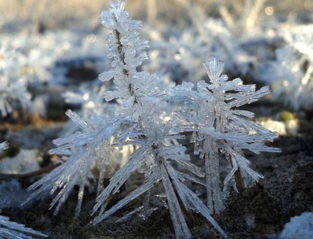 Волинський фотограф показав всю красу цьогорічної зими. ФОТО