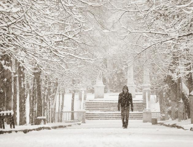 Весь день - сніг: погода у Луцьку та області на 13 грудня