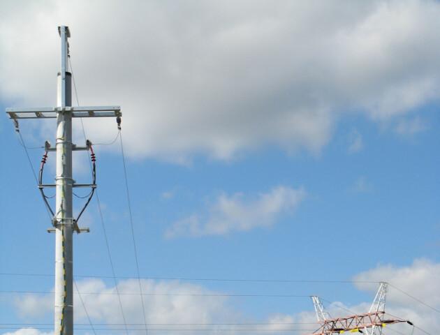 Волинянин, який викрив крадіїв електроопор, два роки безплатно користуватиметься електрикою