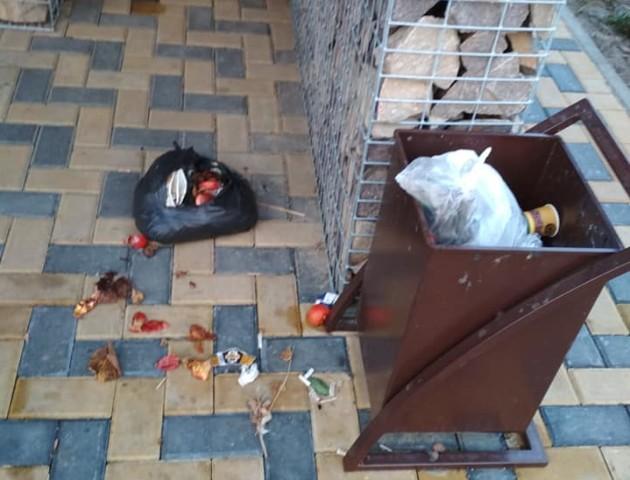 «Відловлювати і на цепу прибивати»: волинянка обурилася сміттям на зупинці. ФОТО
