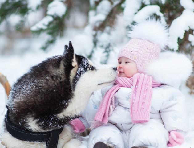 Вчені з'ясували, що їсти свіжий сніг безпечно
