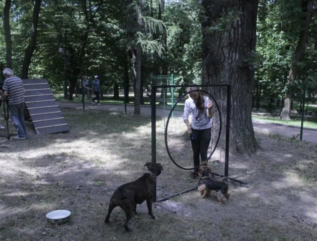 У Луцьку для собак хочуть встановити тренажери