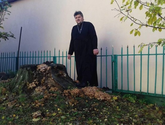 Волинський священник назбирав під церквою грибів. ФОТО