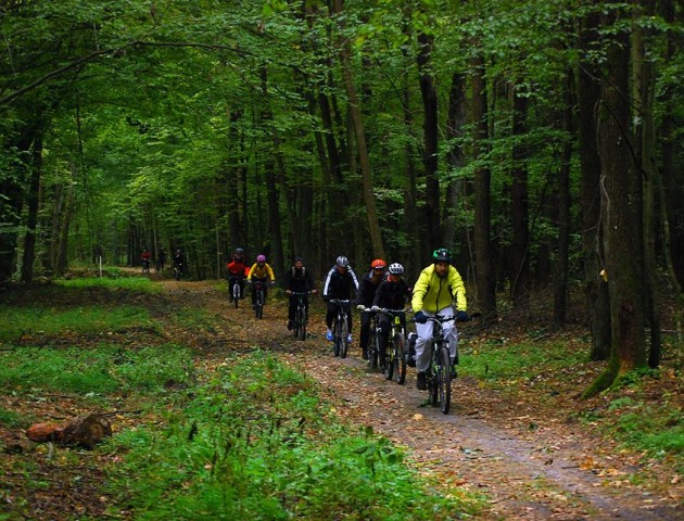 Лісовими стежками та долинами річок: велоподорож «Цуманською пущею». ФОТО