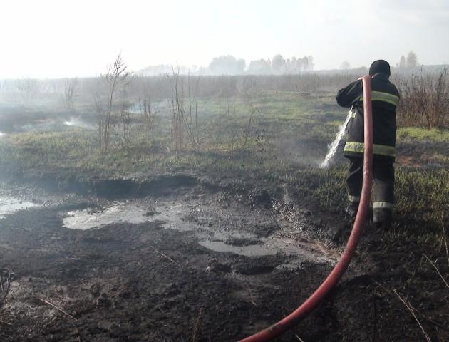 На Волині загорілись торфовища