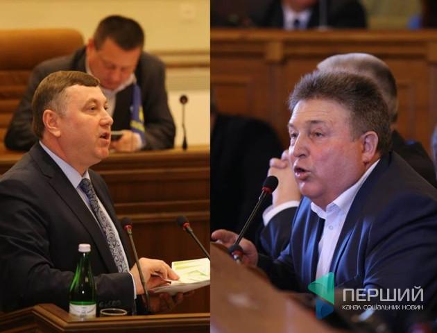 Про незаконні вирубки, корупцію та проституцію: як волинські депутати приймали звернення щодо лісів