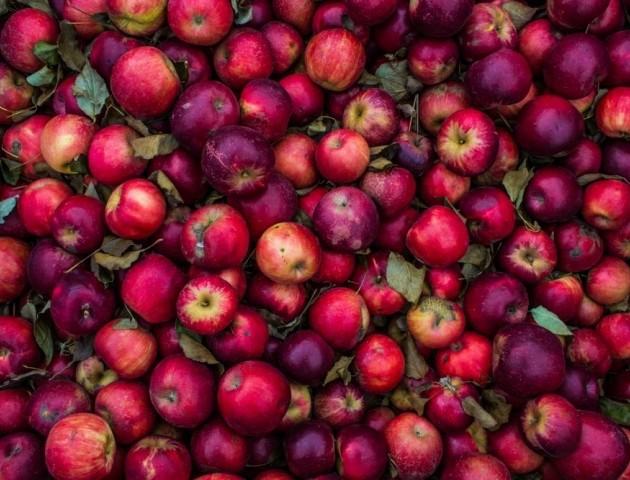 Боротьба з осінньою депресією: топ-5 продуктів, які допоможуть покращити настрій