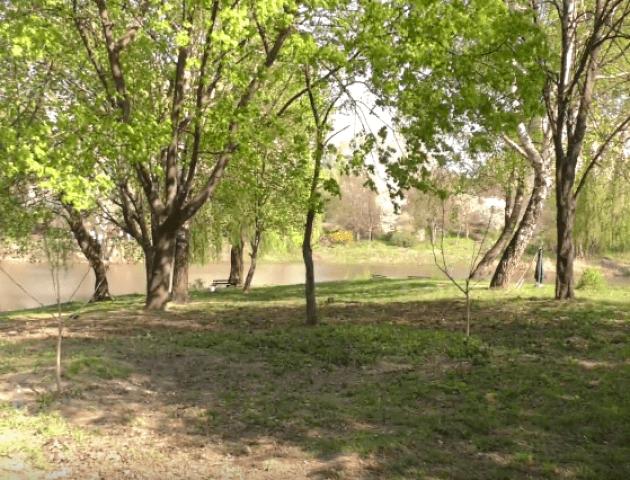 Сотні лучан прибрали Парк 900-річчя. ВІДЕО