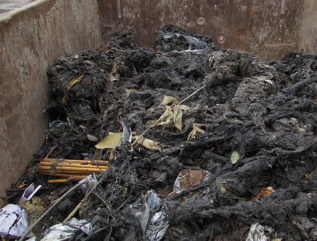 Унітаз замість смітника:  лучани щомісяця викидають у каналізацію майже 50 тонн непотребу