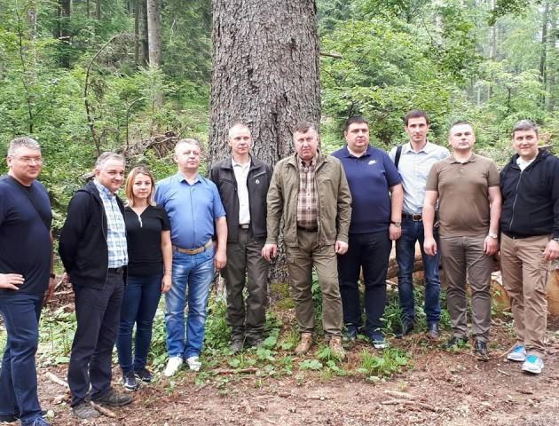 Володимир Бондар обговорив вплив змін клімату на лісове господарство з колегами зі Словенії