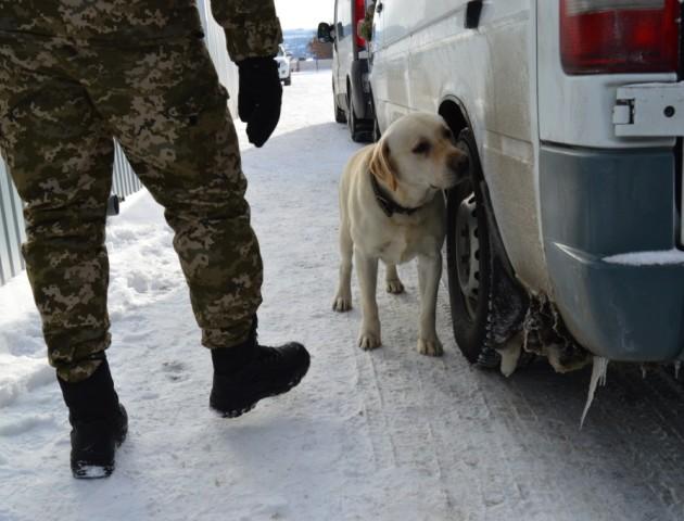 На волинському кордоні затримали партію наркотиків. ФОТО