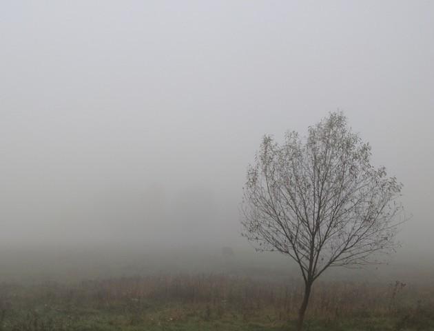 Якою буде погода 30 березня у Луцьку та області