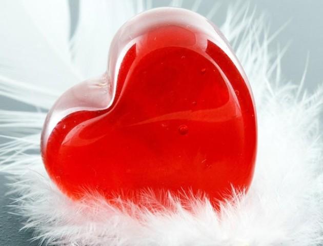 День Валентина у Луцьку. ВІДЕО
