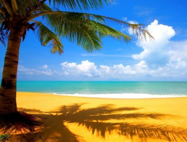 Музика для пляжу: луцький гурт записав нову пісню. ВІДЕО