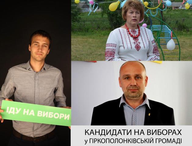 «Карткові будинки» по-волинськи: Гіркополонківська громада