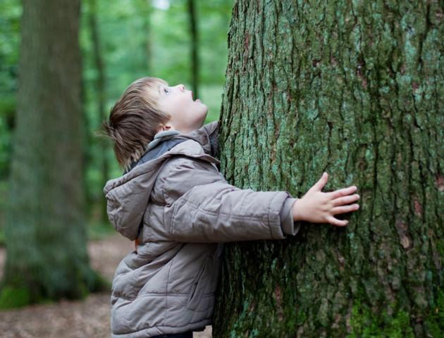 У ківерцівській школі з'явився особливий клас - дітей вчитимуть лісовій справі. ВІДЕО