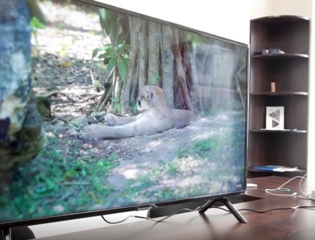 У луцькому магазині «Апельсин» - акція на телевізори «Samsung». ВІДЕО
