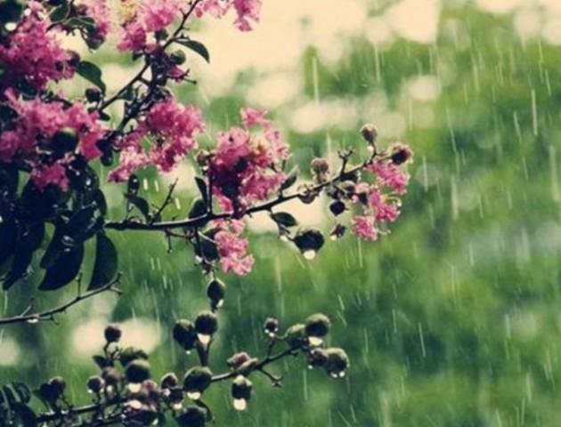 Якою буде погода у Луцьку та області 18 травня