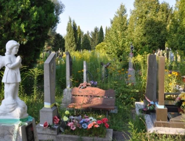 Поросло бур'янами в ріст людини, – лучанка просить прибрати міське кладовище