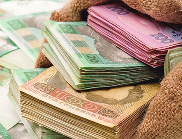 Волинські підприємці–спрощенці у січні поповнили місцеві бюджети на 46,5 мільйона гривень