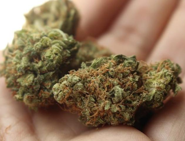 Зловили лучанина з 1 грамом марихуани