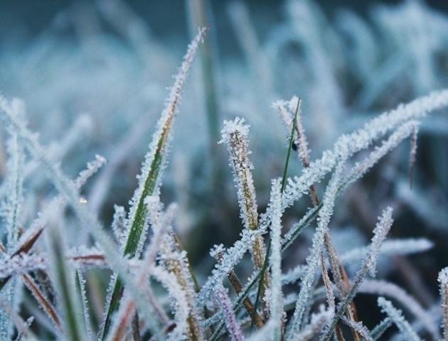 В Україну йдуть перші морози