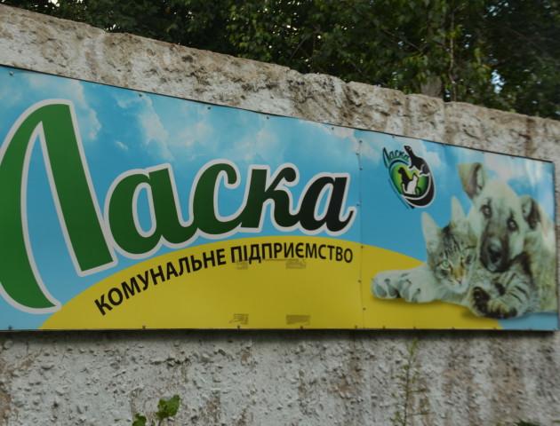 Лучани вимагають ініціювати перевірку на КП «Ласка» та чесно обрати директора підриємства