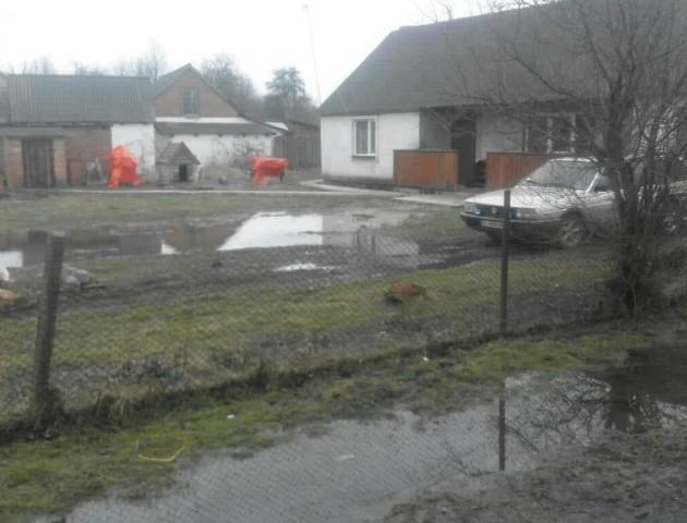 Село на Волині вже 10 років потерпає від підтоплень