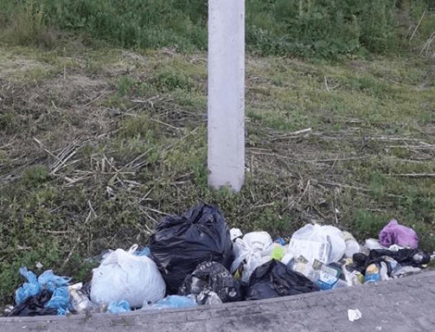 У Луцьку просять встановити підземний сміттєвий контейнер поблизу замку Любарта