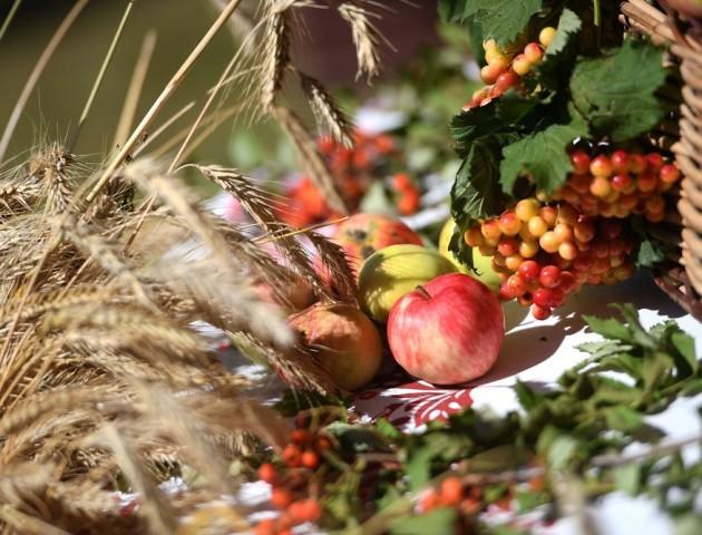 Яблучний Спас: що можна та не можна робити