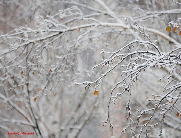 Засніжений Луцьк на світлинах Віктора Чухрая. ФОТО