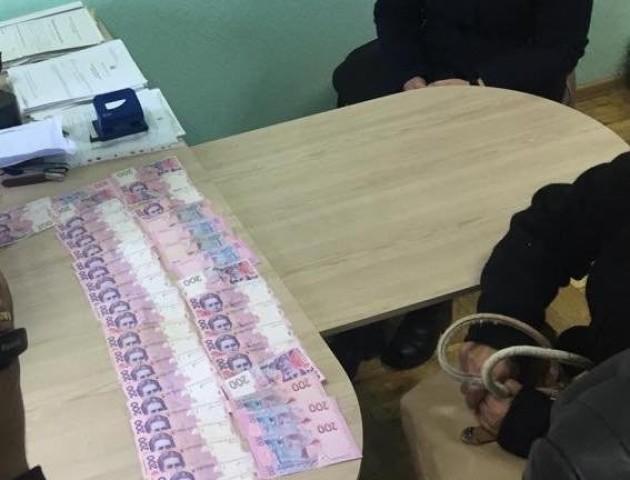 Волинянці, яка тицяла гроші прокуророві, «світить» до восьми років за ґратами. ФОТО