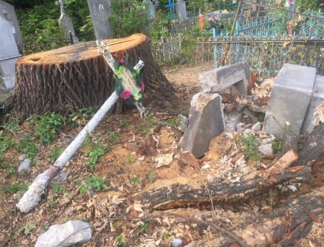 Побиті пам'ятники, вивернуті хрести: у місті на Волині скаржаться на комунальників-вандалів. ФОТО