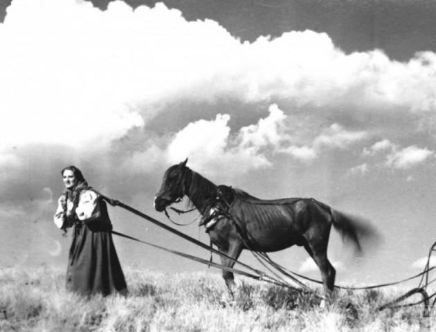 Про волинське село в 1938 році знімали фільм. ВІДЕО, РЕТРОФОТО